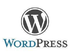 cms wordpress pour la création de site web à lyon