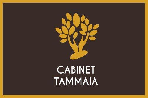 client anthony vidal cabinet tammaia création du logo et création site web