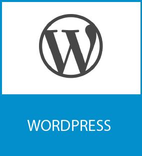anthony vidal formateur wordpress lyon